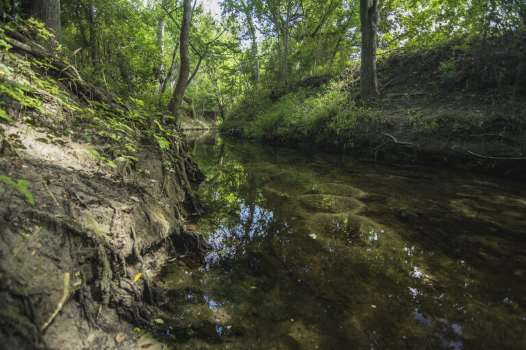 11-007-Creek
