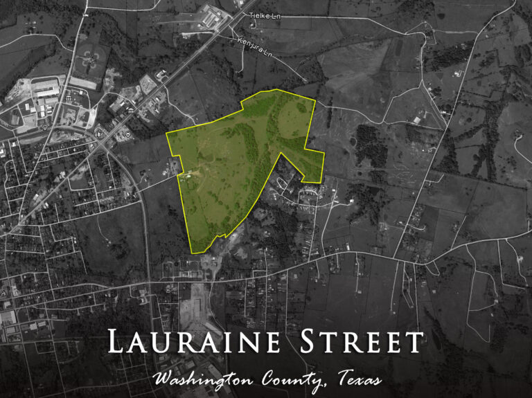 Lauraine Street Map Washington County Texas