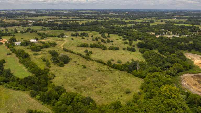 Lush Green Grass and Forrest Commercial Property