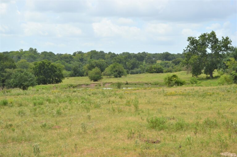 Grassy Field With Pond on Property