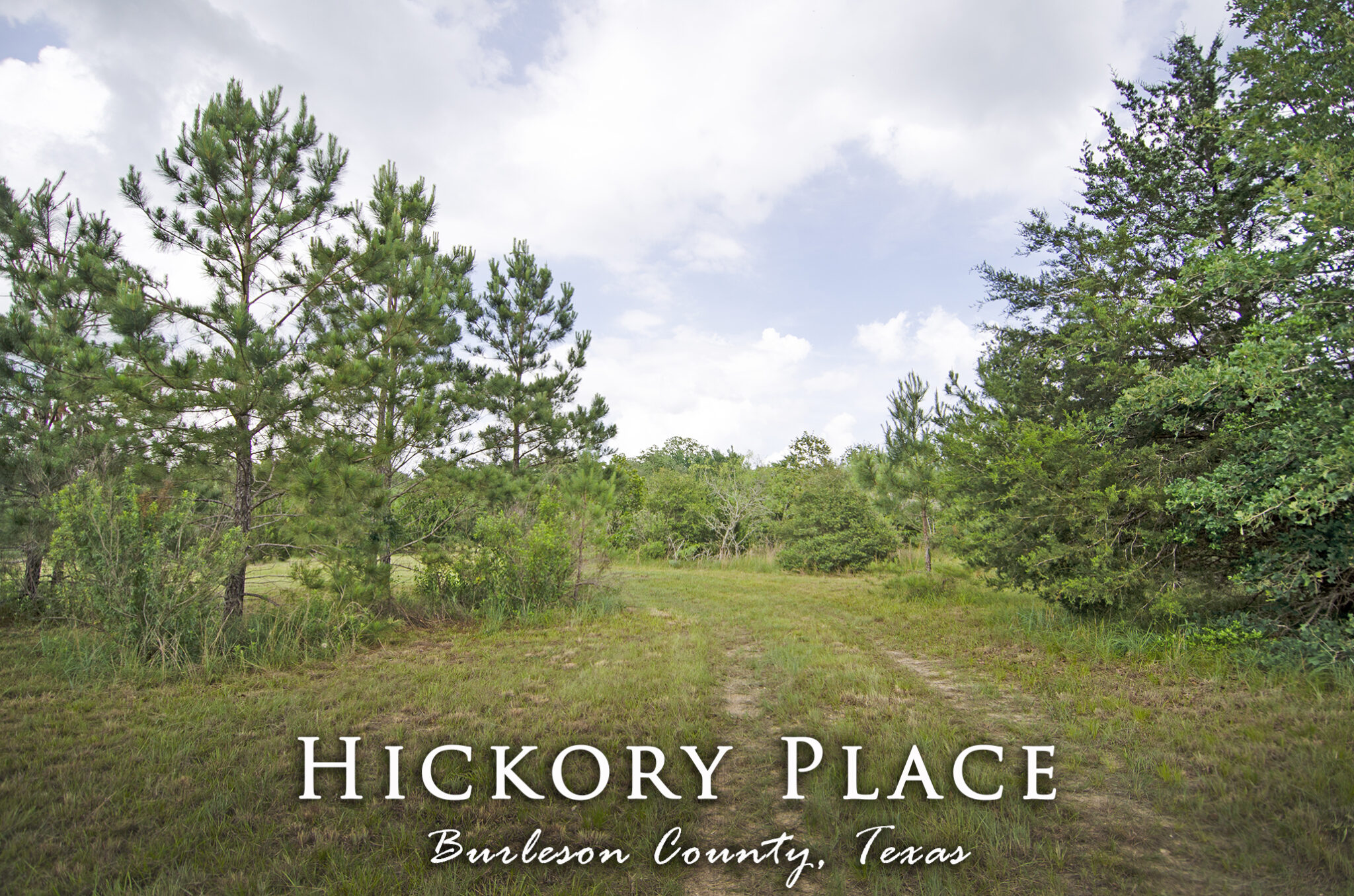 1252 Hickory Place