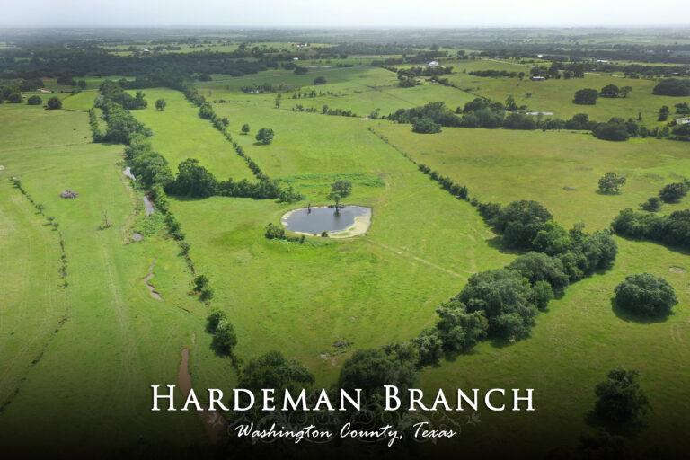 Hardeman Branch- Palestine Road