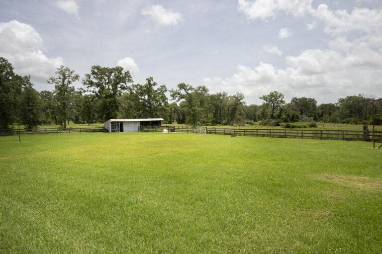 JW Farm- 39159 Farm to Market 1488