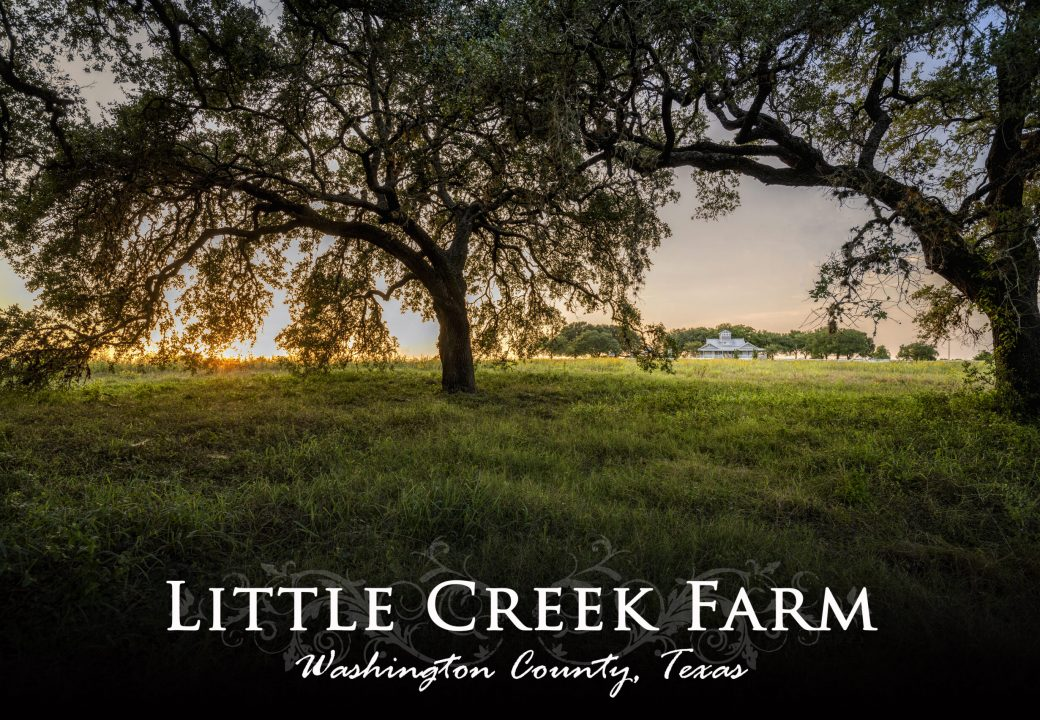 Little Creek Farm- 6475 Quebe Road